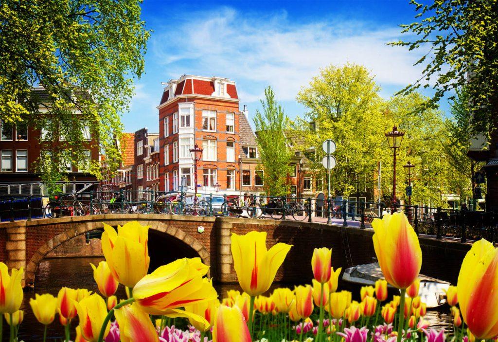 مهاجرت کاری به هلند