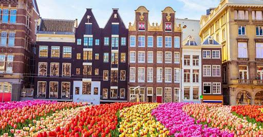 نمایی از کشور هلند